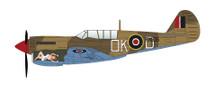 P-40N Kittyhawk No Orchids, 450 Sqn., RAAF, Vasto, Italy, 1944