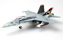 F/A-18C Hornet Display Model USN VFA-137 Kestrels, NE402
