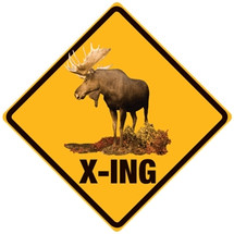 """""""Moose Crossing"""" Ande Rooney"""