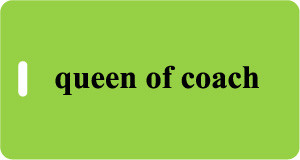 Queen of Coach - Luggage Tag - Lime