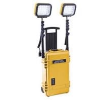 9460 LED Remote Area Lighting System
