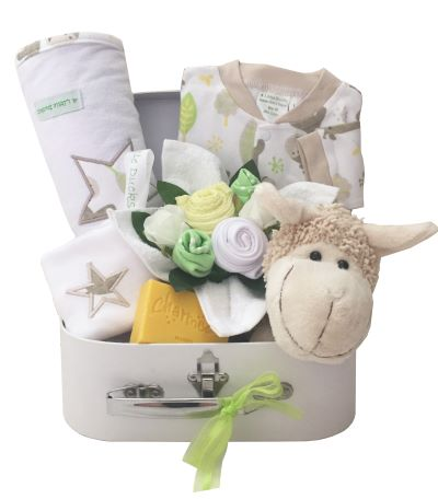 baby-gift-box-neutral-1.jpg