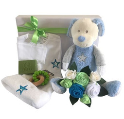Baby Boy Hamper Delight