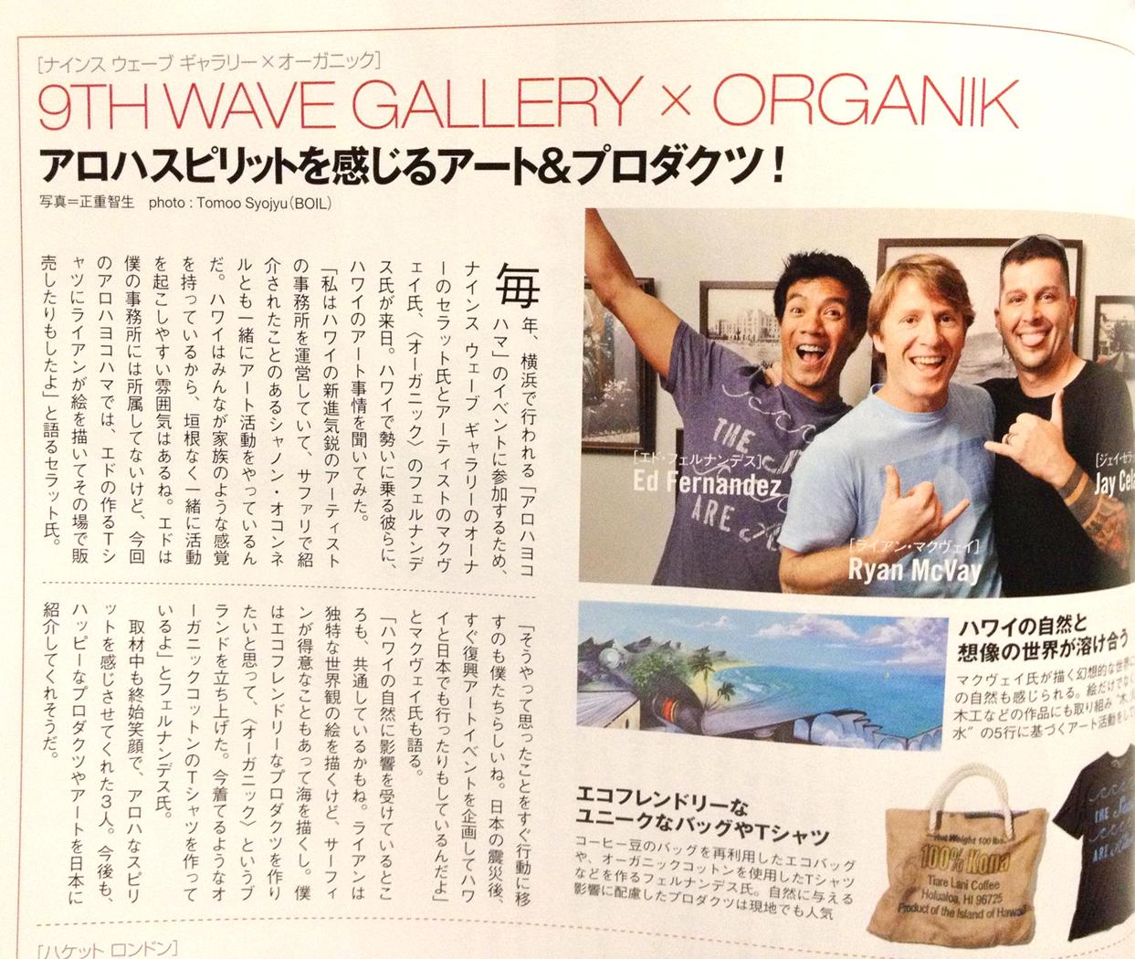 2013-01-01-safari-9th-wave-organik-2.jpg