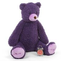 Purple Passion Teddy Bears