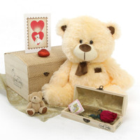 "Love Doctor Bear Hug Care Package featuring 20"" BooBoo Shags"
