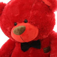 Bear Hug Care Package featuring Randy Shags Red 35in