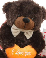 He Loves Me Bear Hug Care Package Brownie Cuddles chocolate brown teddy bear 18in