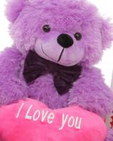 True Love Purple Teddy Bear Hug Care Package 18in