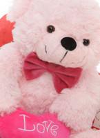 True Love Pink Teddy Bear Hug Care Package 18in
