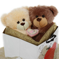 A pawesome pair of love bears!