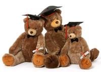 Sweetie Tubs Graduation Teddy Bear Family 2014