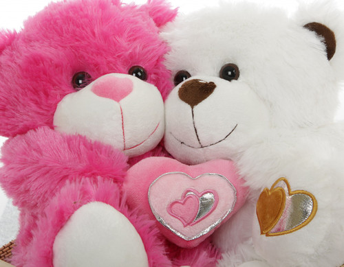 These Valentines Teddy Bear Sweethearts are Inseparable!