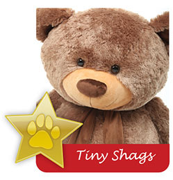 tiny-shags-famous-giant-teddy-bear.jpg