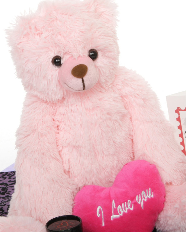 Gimme Some Lovin Bear Hug Care Package Darling Heart Tubs pink teddy bear 18in