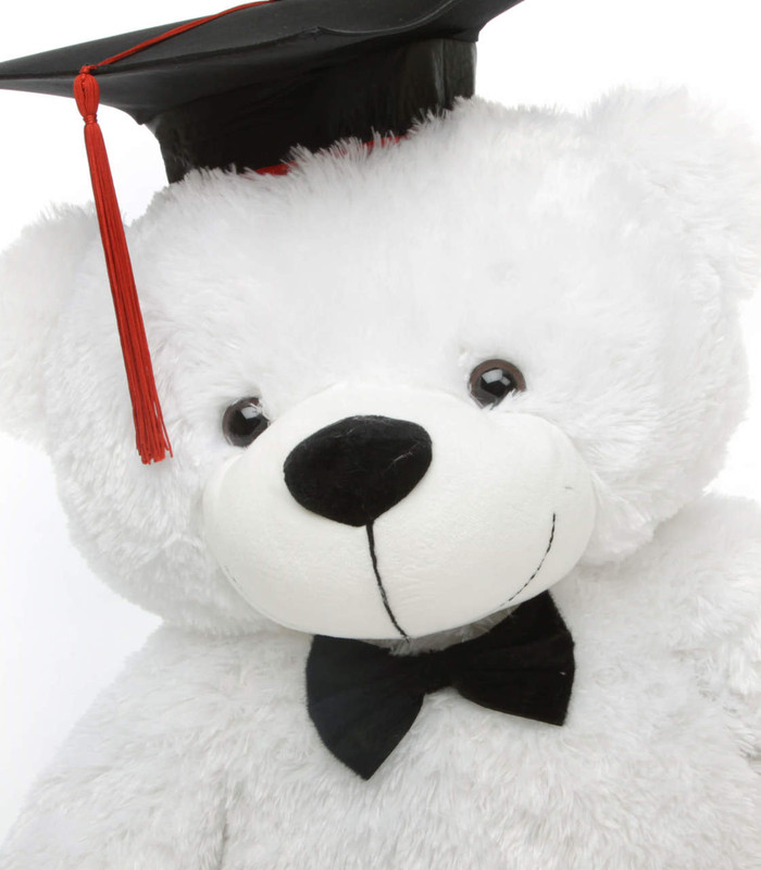 Coco G Cuddles White Graduation Teddy Bear 38in (Close Up)