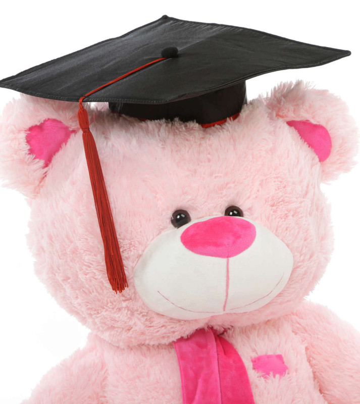 Lulu G Shags Giant Pink Graduation Teddy Bear 35in (Close Up)
