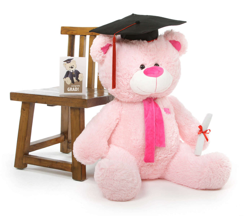 Lulu G Shags Giant Pink Graduation Teddy Bear 35in
