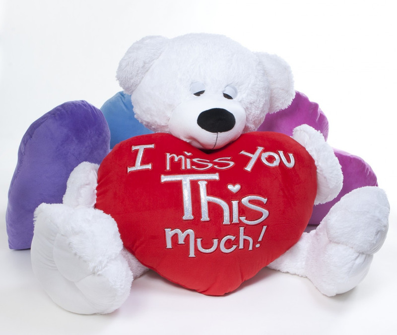 """His big teddy bear plush heart pillow boldly states """"I Miss You THIS Much""""!"""
