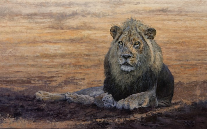 savannah-king-18-x-28.jpg