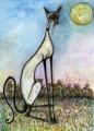Dinner by Moonlight by Elle Wilson