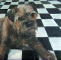 Border Terrier in Oils by Tor Hildyard