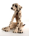 Seated Spotty Dog by Virginia Dowe Edwards