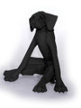 Black Seated Dog by Virginia Dowe Edwards