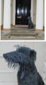 Deerhound Wire Sculpture by Paula Joule Blake