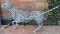 Pointer Wire Sculpture by Paula Joule Blake