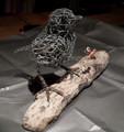 Robin Wire Sculpture by Paula Joule Blake