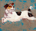 Cards - Mixed Pack 'Dogs a Leaping' - 6 designs by Catherine Ingleby