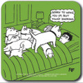 'Off the Leash' Coaster  - You're Snoring!