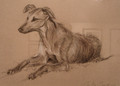 Lurcher Painting by Camilla Gardner