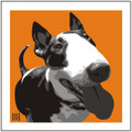 Print of English Bull Terrier on Orange by Emily Burrowes