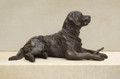 Brunch Labrador Sculpture by Rosemary Cook