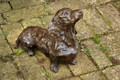 Lifesized Dachshund Sculpture by Rosemary Cook