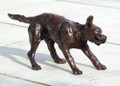 Wet Labrador Shaking A Sculpture by Rosemary Cook