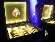 Led ACE Case Champagne Carrier Case