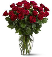 Two Doz Red Roses