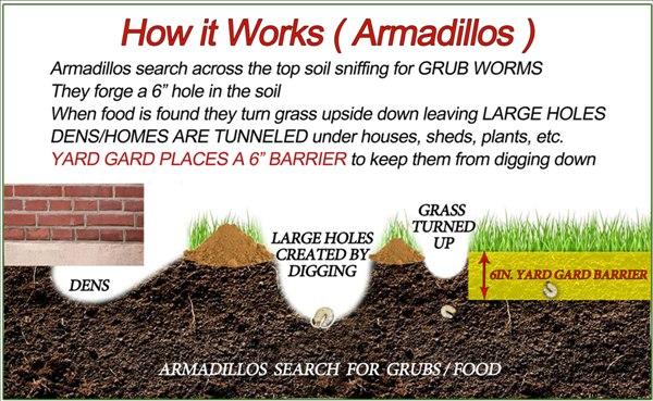 diagram-how-it-works-armadillo-2.jpg