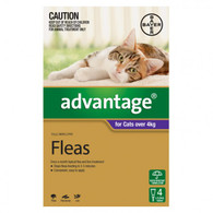 Advantage 4 Month Supply for Cats Over 4kg