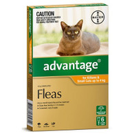 Advantage 6 Month Supply for Kittens and Small Cats up to 4kg