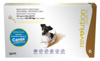 Revolution 6 Months for Dogs 5.1-10kg
