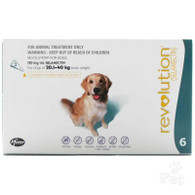 Revolution 6 Months for Dogs 20.1-40kg