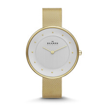 Skagen Gitte Women's Steel Mesh Watch SKW2141