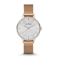 Skagen Anita Women's Steel Mesh Watch SKW2151
