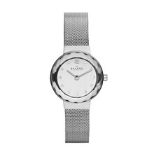 Skagen Silver Dial Stainless Steel Mesh Ladies Watch 456SSS