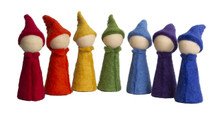 Papoose Rainbow Gnomes