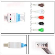Datascope 5 Lead Dual Pin ECG Leadwires (Snap)